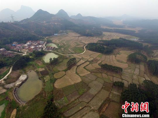兴宾区的富硒土地镶嵌在山水中。 蒋雪林 摄