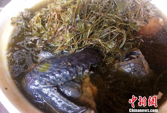 竹丝鸡炖老江菜汤 李晓春 摄