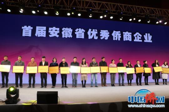 选出的首届安徽省优秀侨商企业 赵强 摄