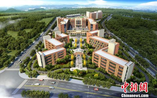 重庆市政协委员:希望让教育成为重庆的名片