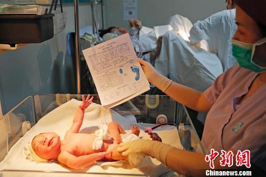 """凌晨0:03分,上海市第一妇婴保健院的产房里迎来了第一只""""金猪宝宝"""",医护人员正对宝宝进行相关信息登记。 殷立勤 摄"""