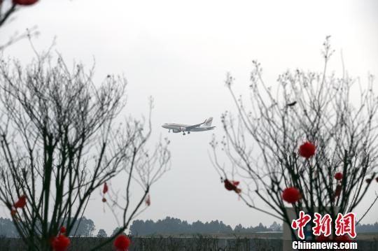 从云华新村看到的客机降落画面。 王磊 摄