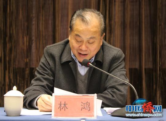 中国侨网图为宁德市委常委、统战部部长林鸿讲话。 林榕生 摄
