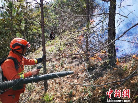 图为森林消防员清理火场烟点。丽江市森林消?#20048;?#38431;供图
