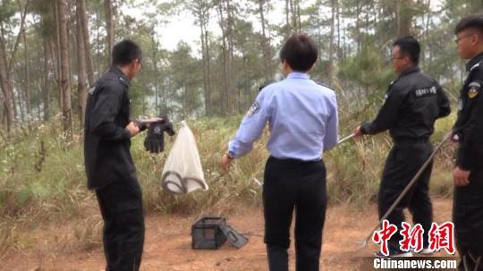 图为民警将眼镜王蛇放归大自然。文山州自然资源公安局供图