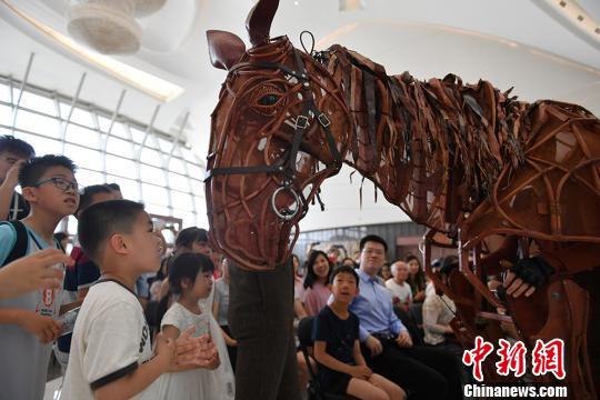 英国国宝级舞台剧《战马》中文版正式登陆江苏大剧院,由人操作的偶版战马Joey神似真马,令观众为之惊艳。泱波 摄
