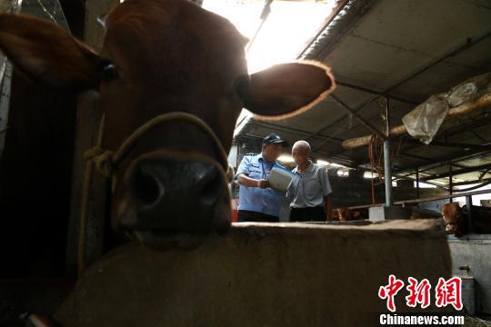黄洪平在皖赣线附近的养牛户家中进行铁路安全知识宣传。 韩苏原 摄