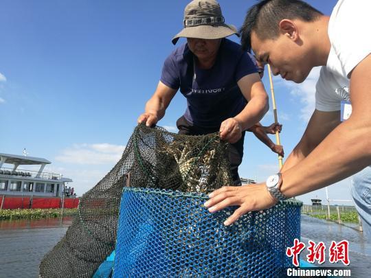 蟹农正从阳澄湖中捕捞起一只只肥美的大闸蟹。 钟升 摄