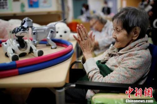 北京赛车pk10登录平台官网:中国老年人口已超2.4亿_用机器人养老靠谱吗?