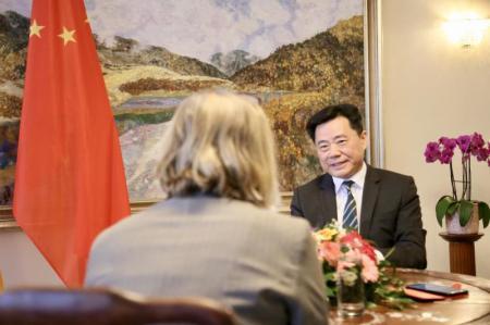 中国驻德国大使吴恳接受德国《星期日法汇报》专访。(图片来源:中国驻德国大使馆网站)