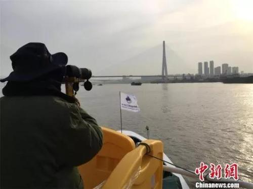 资料图:长江江豚生态科学考察队科考人员正在工作 杜华柱 摄