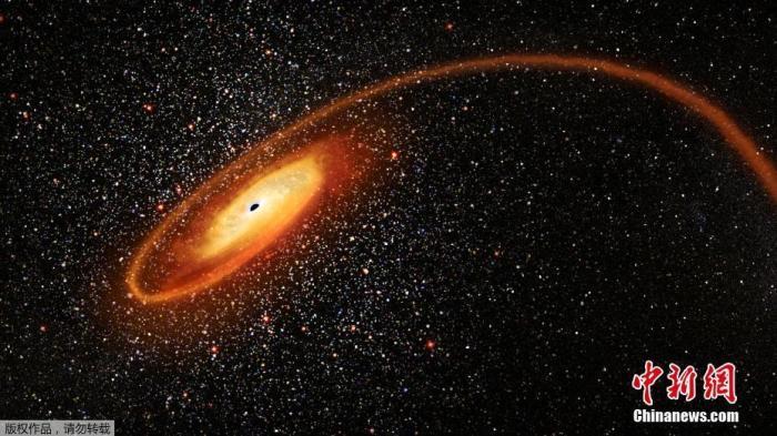 资料图:当地时间4月2日,由NASA提供的图片显示了一颗恒星被一个有数万个太阳质量的黑洞撕碎的现场模拟图片,画面壮观瑰丽。