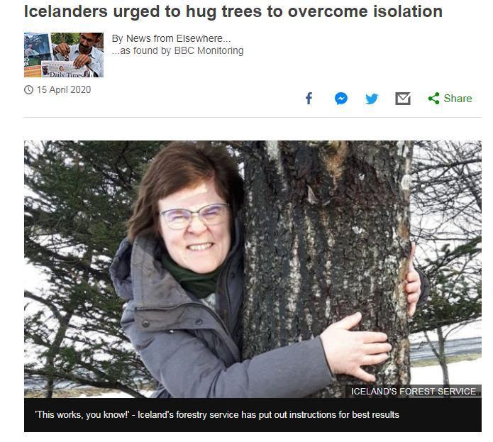 图为冰岛林业服务部门宣传拥抱大树。图片来源:英国广播公司(BBC)网站截图。