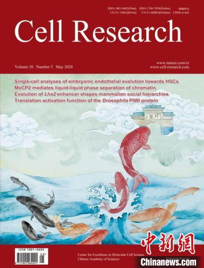 中国科学院分子细胞科学卓越创新中心 供图  摄