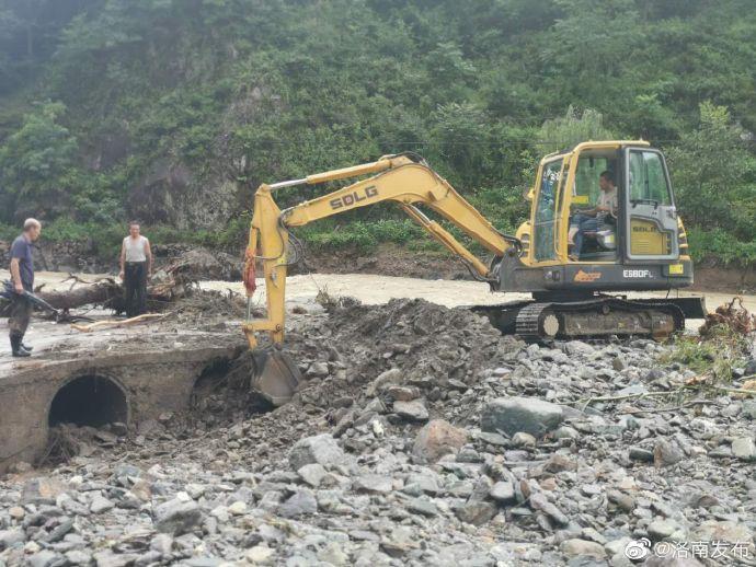 图片来源:陕西省商洛市洛南县政府官方微博