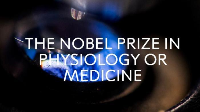 2020诺贝尔生理学或医学奖揭晓 盘点近10年得主及成就