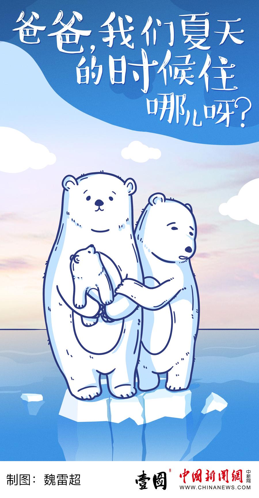 """宾利平台:壹图北极熊的""""蜗居""""谁来守护?"""