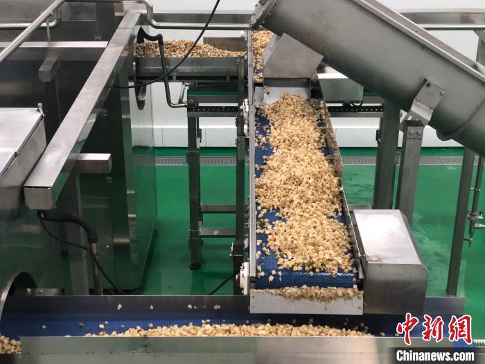 图为重庆市涪陵榨菜集团的数字化生产车间。 钟旖 摄