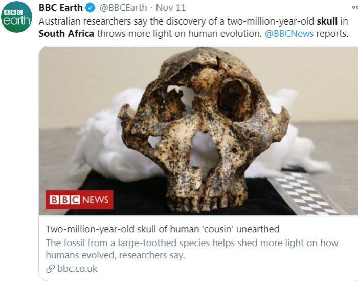 图片来源:BBC地球频道(BBC Earth)社交网站官方账号截图