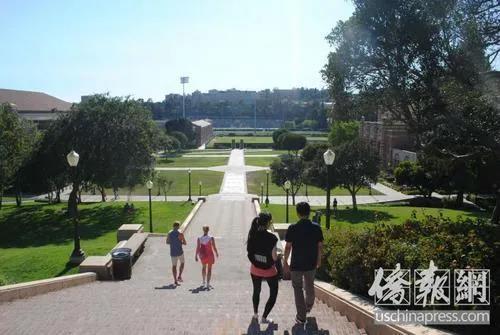 美国加州大学洛杉矶分校(UCLA)。 美国《侨报》/李青蔚 摄