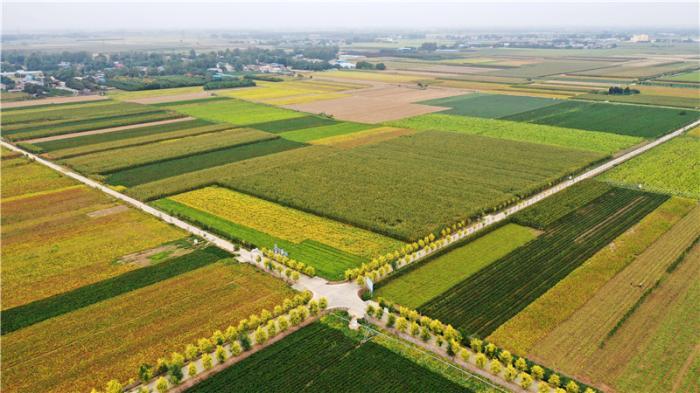 我国中原农耕地区地貌