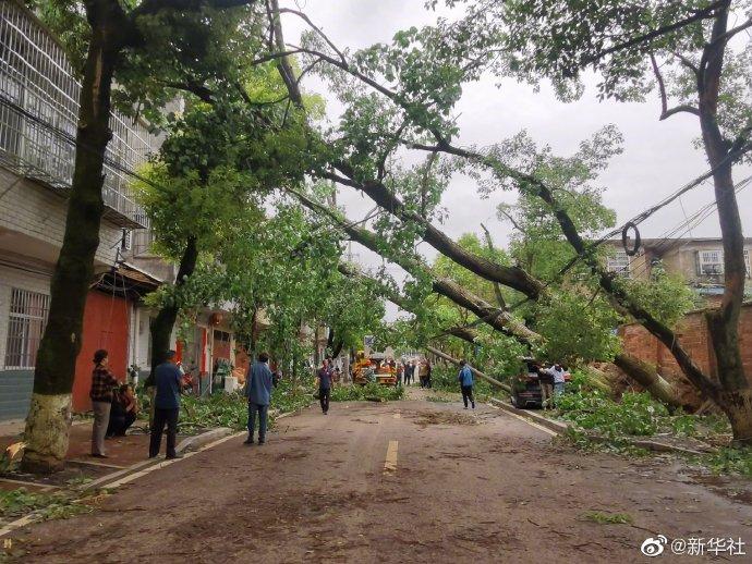湖南岳阳局地出现12级大风 部分地区受灾