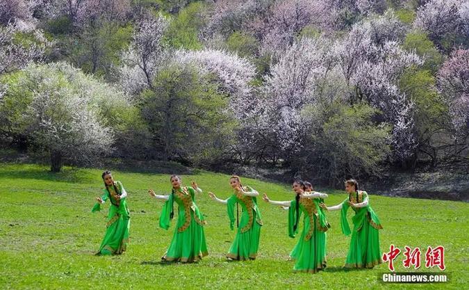 资料图:图为新疆歌舞表演。吴志恒 摄