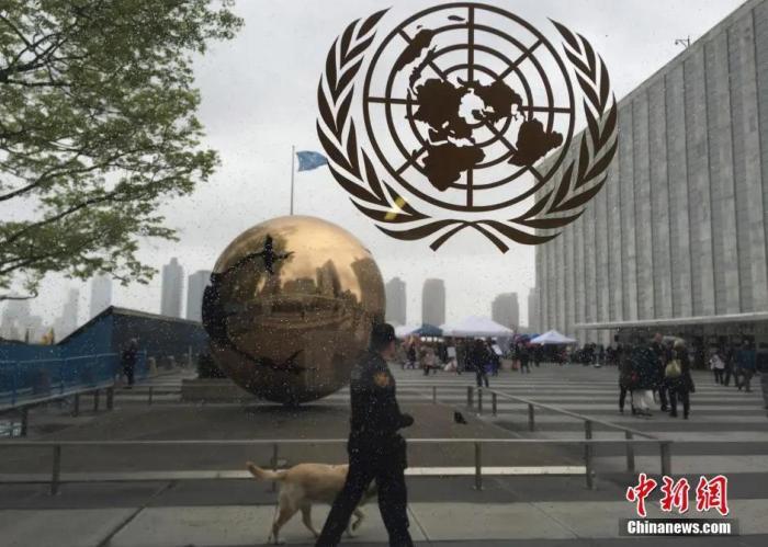 資料圖:位于美國紐約的聯合國總部。<a target='_blank' href='http://www.dtv4pc.net/'>中新社</a>記者 廖攀 攝