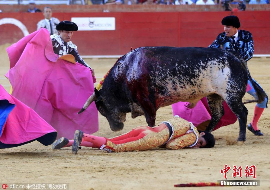 西班牙斗牛士被公牛刺死 - 五月风 - 五月风空间