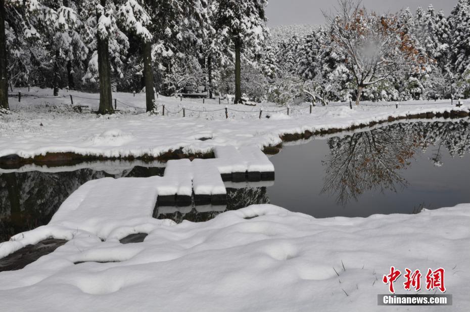 重庆仙女山迎今冬首场雪