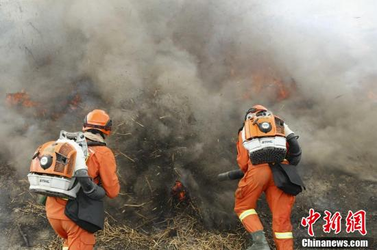 新疆森林消防练兵
