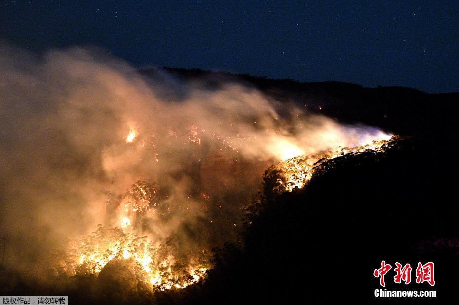 澳大利亚新南威尔士州林火持续肆虐