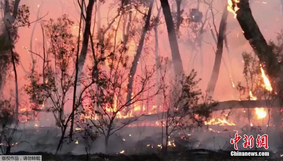 澳山火加剧 悉尼周边火势巨大