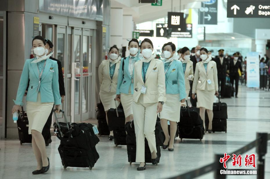 多伦多机场 空乘人员全体佩戴口罩准备登机