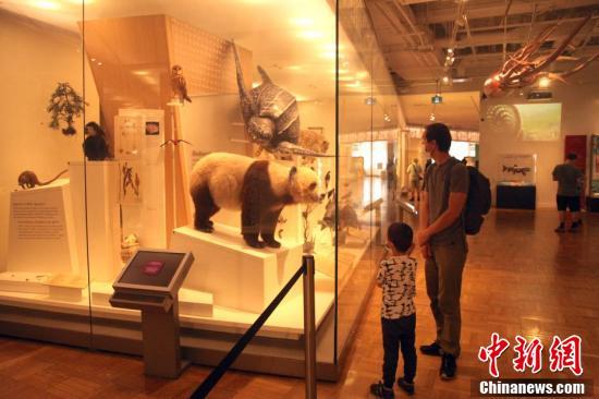 加拿大皇家安大略博物馆重新开放