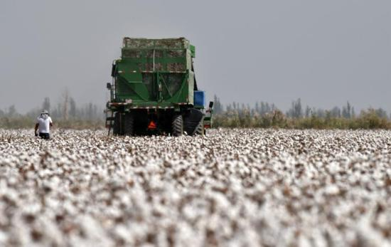 BCI removes statement on Xinjiang cotton from its website