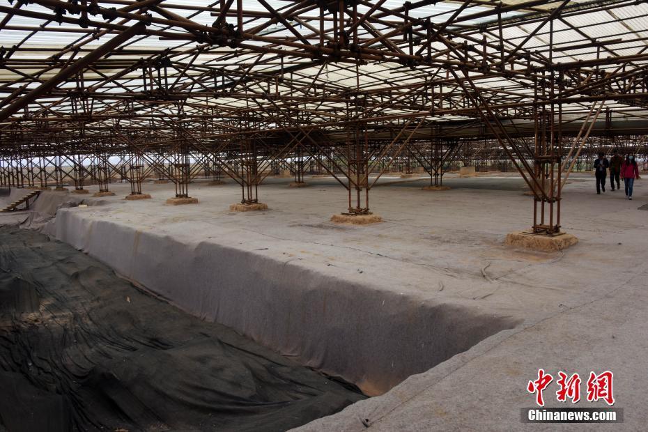 探访汉魏洛阳故城太极殿宫院遗址考古发掘现场