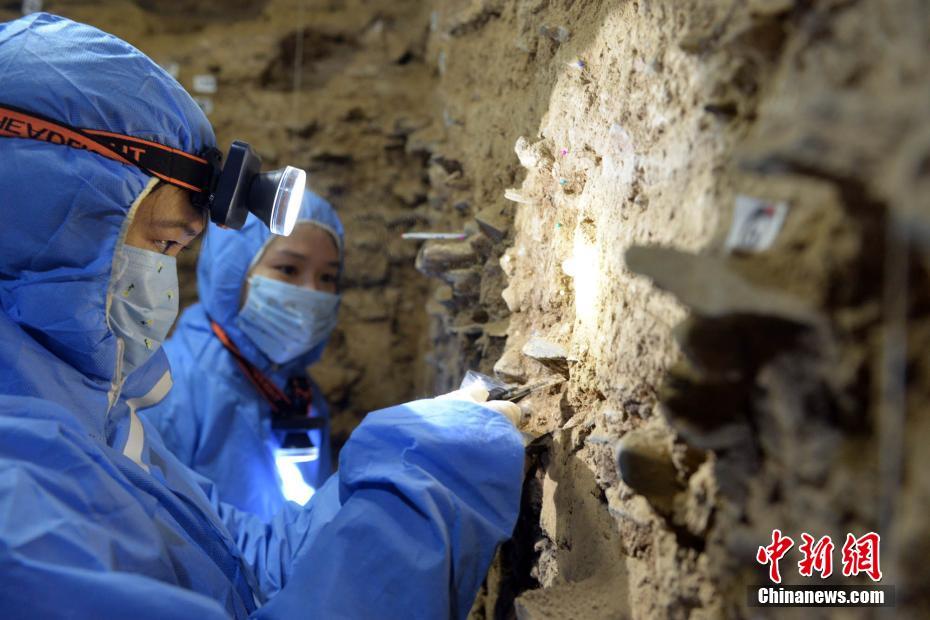 最新古DNA研究:丹尼索瓦人晚更新世長期生活在青藏高原