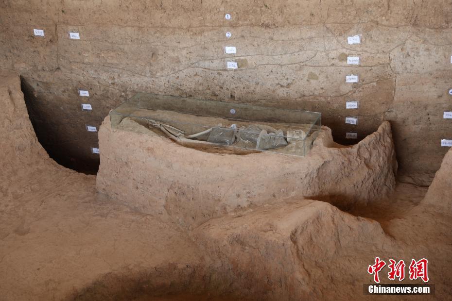 探訪河南澠池仰韶村遺址