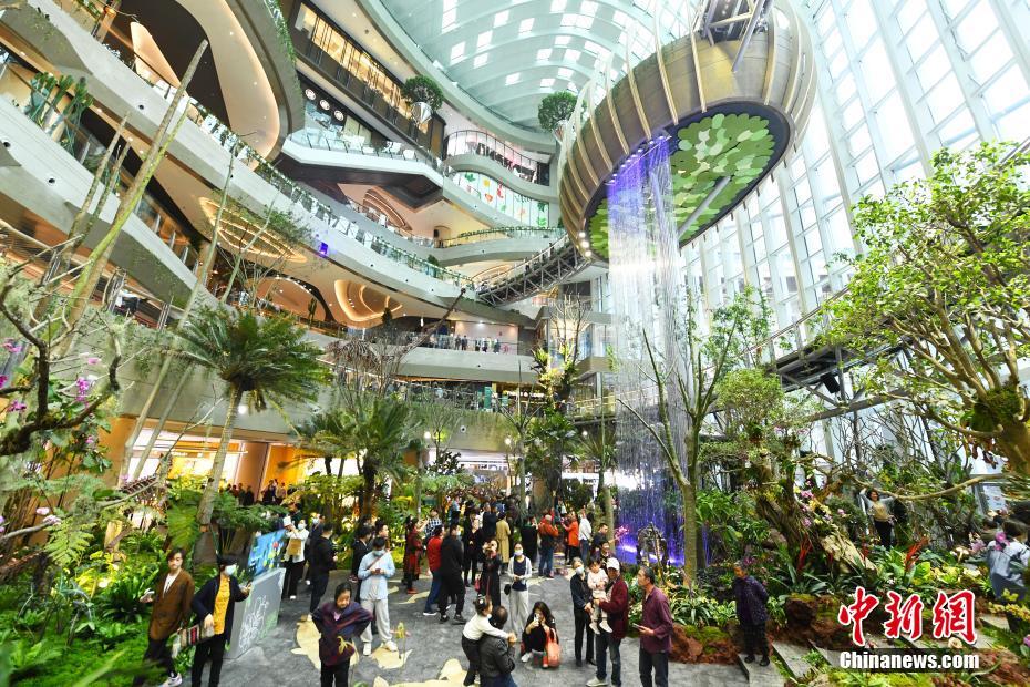 魔幻原始森林场景亮相重庆商圈