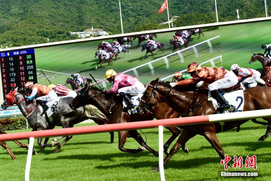 香港新马季正式开锣 骑师与马匹齐争佳绩