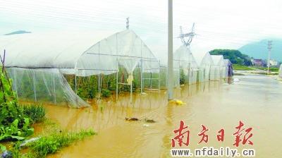 连州gdp_连州国际摄影年展2014 刘张铂泷 实验室(2)