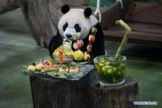 Taiwan, mainland fans celebrate Taipei-born panda's birthday