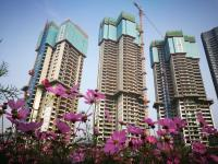China's property investment up 8.8 pct in Jan.-Sept.
