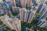 魔域私服手游版投资60亿元 广东百万头生猪产业链项目开工