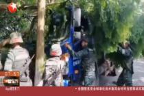 卡车卡树林动弹不得 武警特战员路过出手施救
