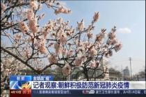 朝鲜积极防范新冠肺炎疫情
