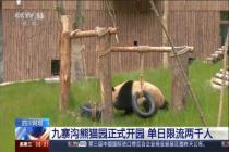 九寨溝熊貓園正式開園 單日限流兩千人