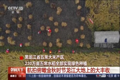 航拍俯瞰金秋时节龙江大地上的大丰收