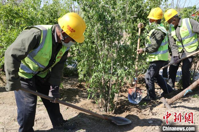 北京新一轮百万亩造林绿化建设完成过半